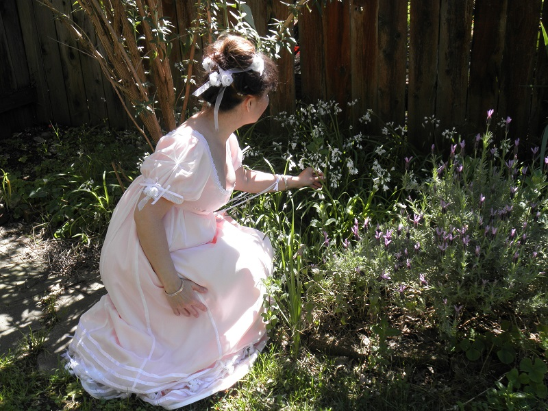 Reproduction Regency Peach with White Sheer Ball Gown. In the Garden. April 2011