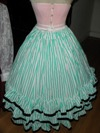 teal roses fancy dress underskirt front view